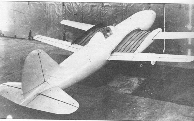 NIAI RK-I extending wing airplane